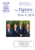 Figtree - Term 4 2019