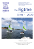 Term 1, 2020 Figtree Newsletter