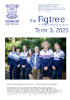 Please enjoy reading the Term 3 Figtree Newsletter